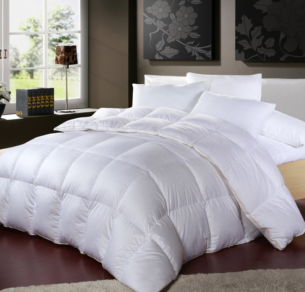 What Is The Best Rated Down Pillow